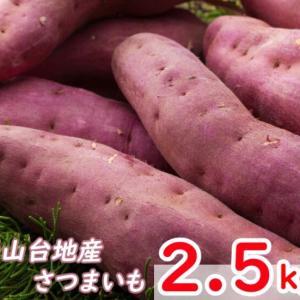 【ふるさと納税】掘りたてさつまいも2.5kg ~高知県室戸市~