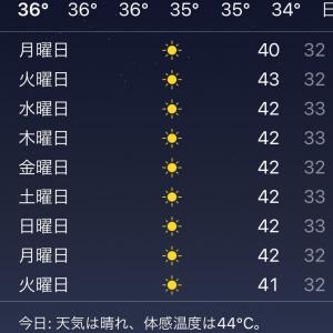 体感温度は53度⁈ 高温と湿気で超高温!