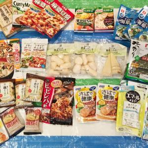 【一時帰国】夫が日本で買ってきたものをご紹介☆