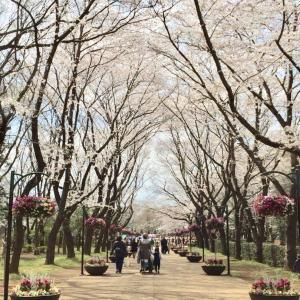 春休みにアンデルセン公園へ行った写真を今更