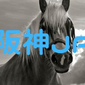 【2019年】阪神JFには3つの予想ポイントがある!
