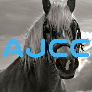 AJCCはスペシャリストにお任せ