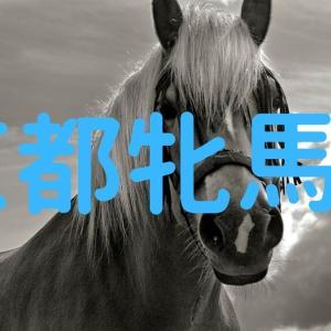 京都牝馬Sは大穴から勝負
