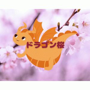 ドラゴン桜 感想 5話【ネタバレあり】藤井と小杉さんの闇が気になる