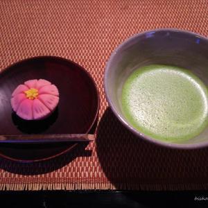 【二条城・西陣・御所 お立ち寄りスポット】鶴屋吉信|できたて生菓子を頂きました。