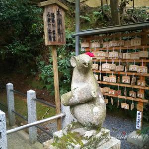 【岡崎 立ち寄りスポット】大豊神社 2020年の干支にちなんで、初詣は狛ねずみのいる大豊神社へ