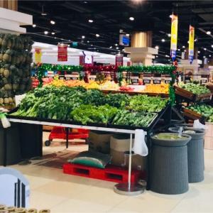 マナドではあの野菜が超高級だった!