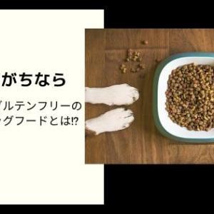 犬が下痢がちなら グルテンフリーの消化のいいおすすめドッグフードとは!?