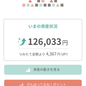 tsumiki証券四ヶ月目