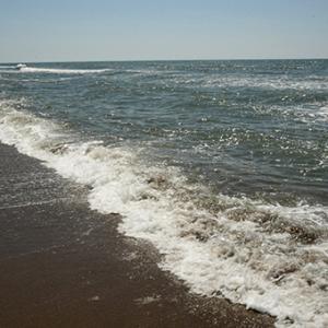 海辺の休日2020.08.20