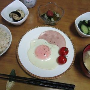5/24 朝食