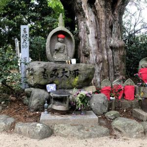 初秋の浄瑠璃寺