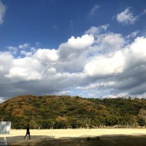 初冬の堀之内、城山公園