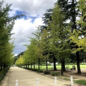 リハビリ兼ねて、初秋の松山城、城山公園へ