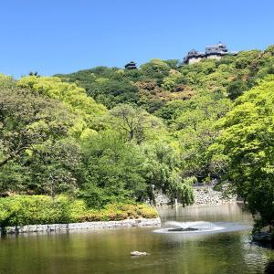 緑が眩しい、松山城