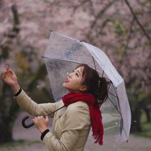 4月は春雨。桜の花びら舞う、雨の午後。by 小柳さん@リクエスト撮影。