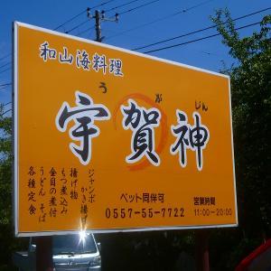伊東按針祭花火大会へ ③