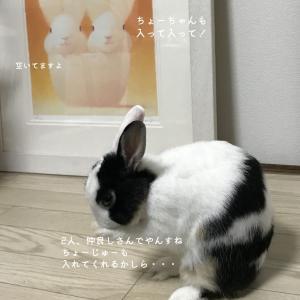 ☆【うさぎ絵日記】 魅惑の 長十柄
