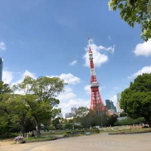 東京タワー と 芝公園  歩行訓練最高っ