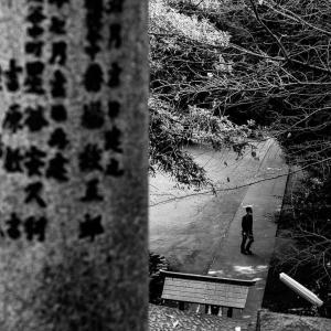 駒込富士神社 (東京)