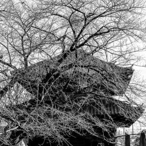 諏訪山吉祥寺の経蔵 (東京)