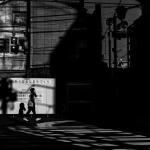 影に覆われつつある不忍通り (東京)