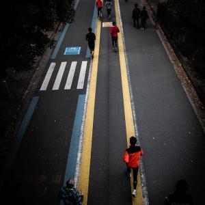 駒沢オリンピック公園のランニングコース (東京)