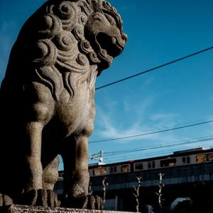 品川神社の狛犬 (東京)
