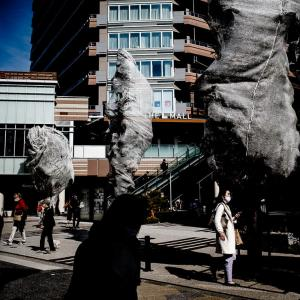 カバーで覆われた街路樹 (東京)