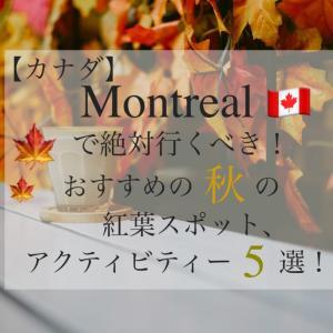 【カナダ】モントリオールで絶対行くべきおすすめの秋の紅葉スポット、アクティビティ5選!