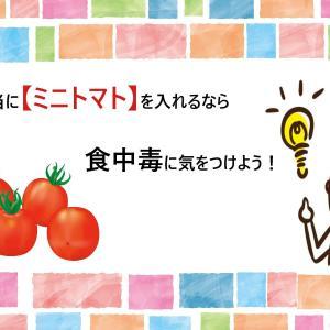 お弁当に【ミニトマト】を入れるなら食中毒に気をつけよう!