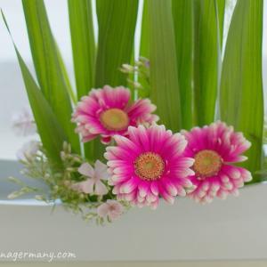 夏の花であるグラジオラス主材のいけばな