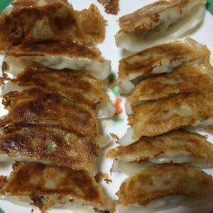 【冷凍餃子4種を比較】味の素(普通&生姜)、王将、TOPVALUを立て続けに食べた