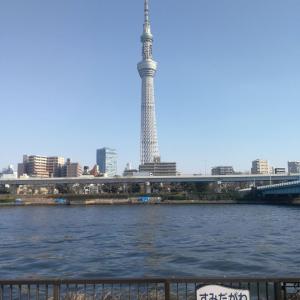 ジョギング 隅田川テラス 上流 8.0kmくらい