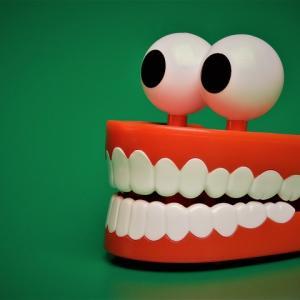 新人介護士に教えられる?入れ歯の基本