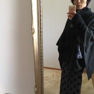 ポンチョと着物とモンキチョウ