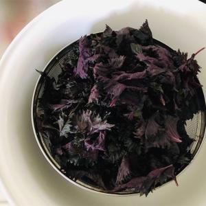 【梅仕事】目の覚めるような色 紫蘇ジュース