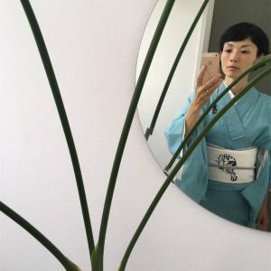 研修の日の着物、とミニトマト