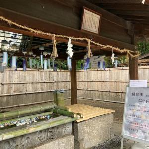 【日本の神事】水無瀬神宮で夏越の大祓