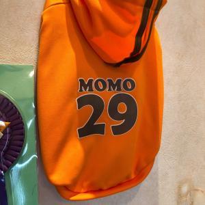 Momo オーバースペシャル❗️