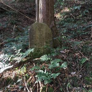 【京都】独鈷抛山(とこなげさん)千手寺