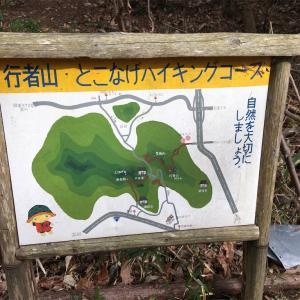 【京都】行者山で石英と出会う