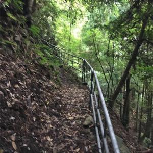 【滋賀】金比羅神社のお水と神秘的な木々達