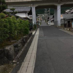 【滋賀】樹下神社と気になる木