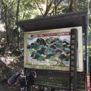 【京都】八大龍王社と巨岩