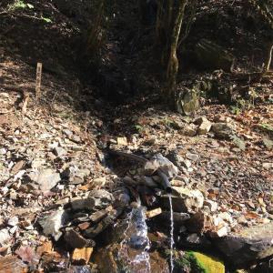 【京都】牛尾山法厳寺のお水