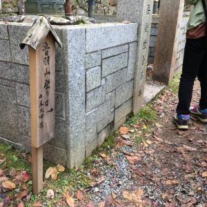 【京都】牛尾山法厳寺で木彫りの龍に出会う