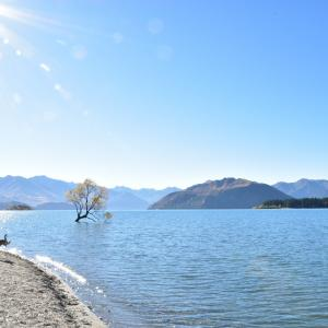 ニュージーランドの四季~サマータイムもあるよ~