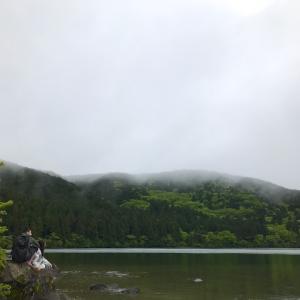 【心と体を元気にする森林浴ウォーク】芦ノ湖の隠れおすすめスポット『箱根やすらぎの森』で日常の喧騒から離れてみよう。