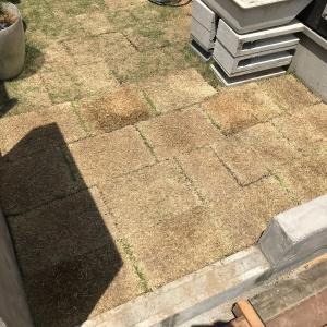 庭の人工芝を剥がして本当の芝生を敷いてみました!芝の張り方・手順について